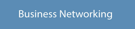 """Networking opportunities with American and Brazilian business leaders through """"Let's Connect"""" events, LinkedIn, and database of business resources."""