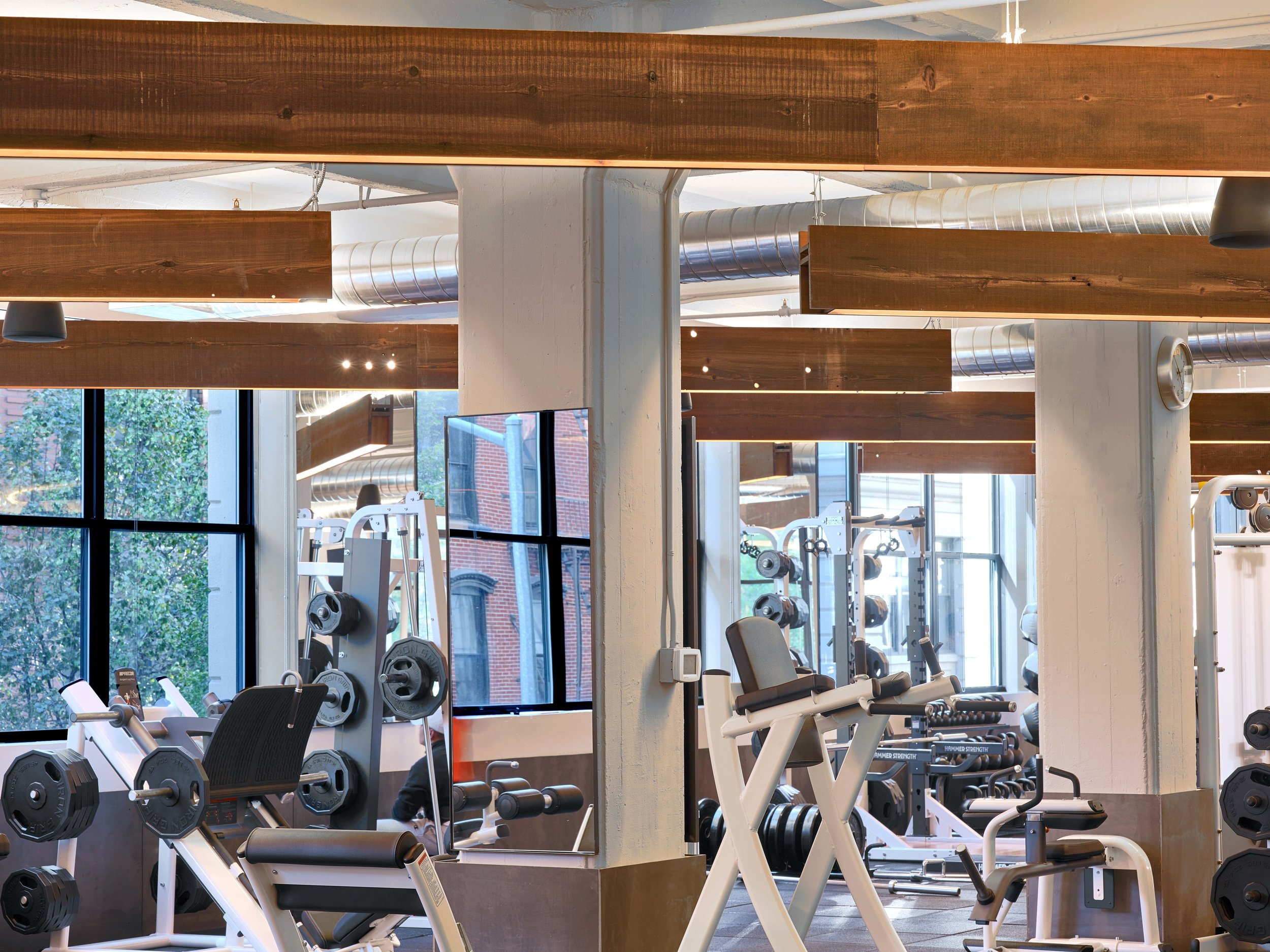 Equinox Dumbo Free Weight Area