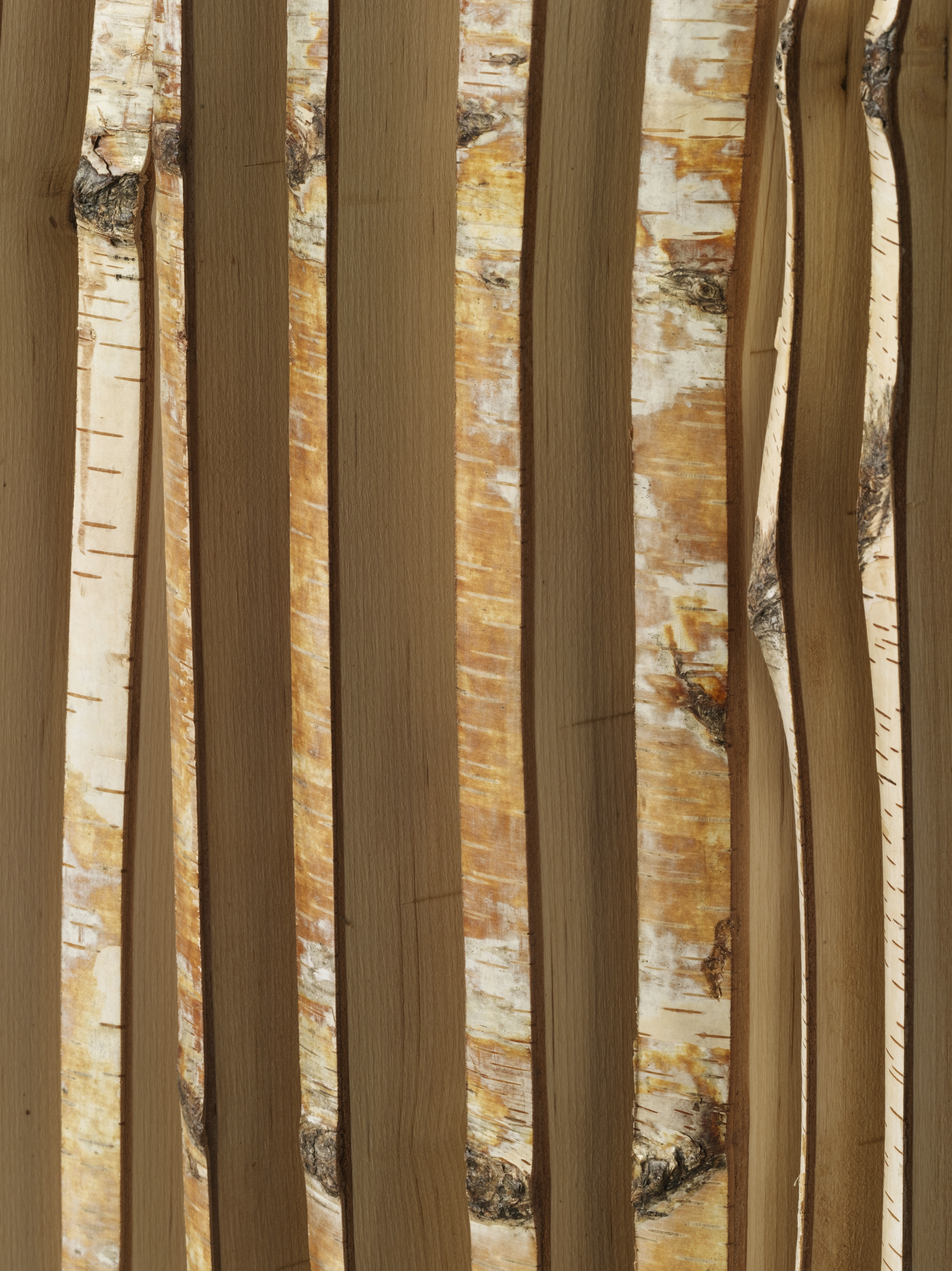 Bohemian Apartment Bamboo Panel Detail