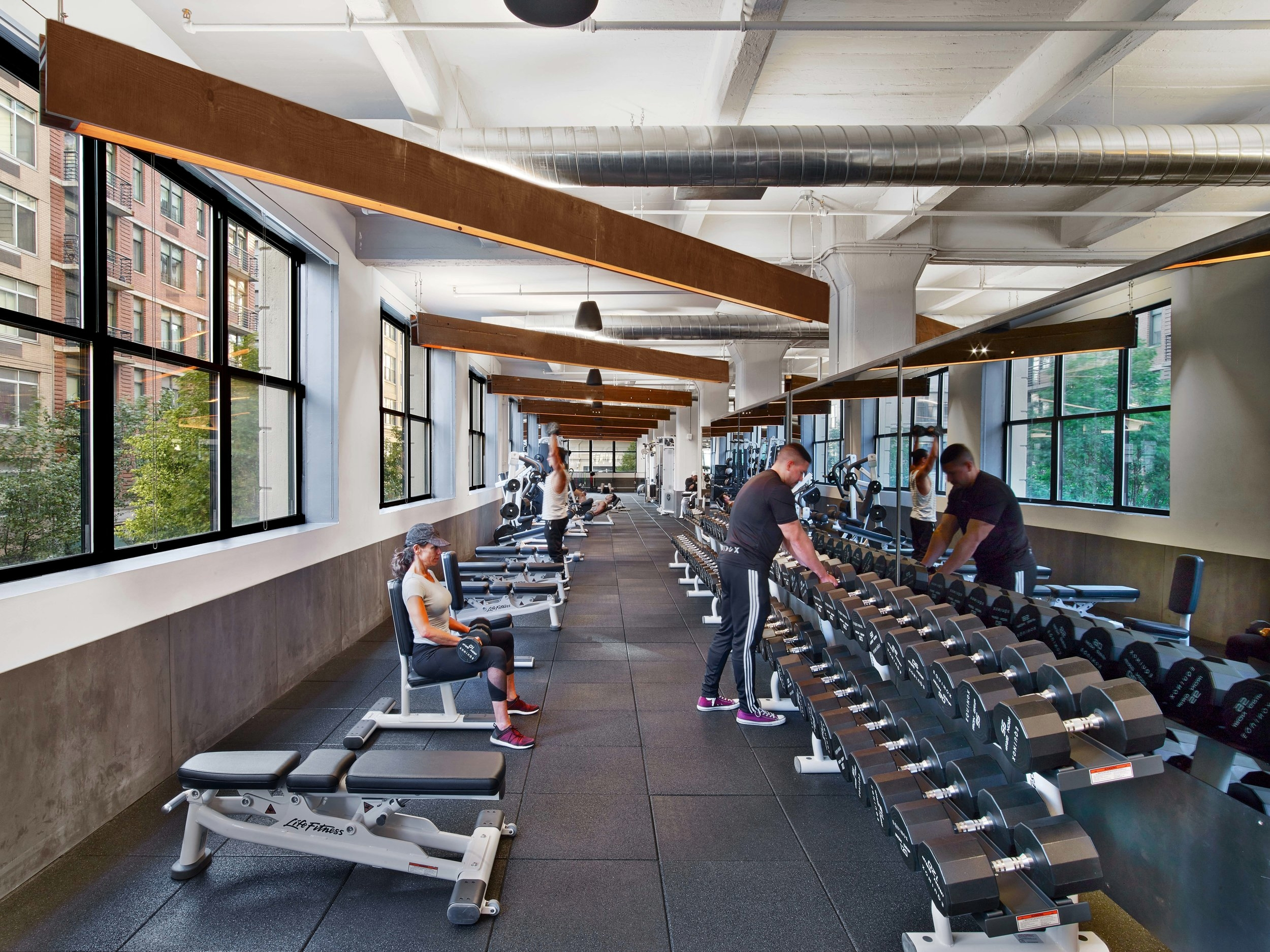 Equinox Dumbo Weight Area