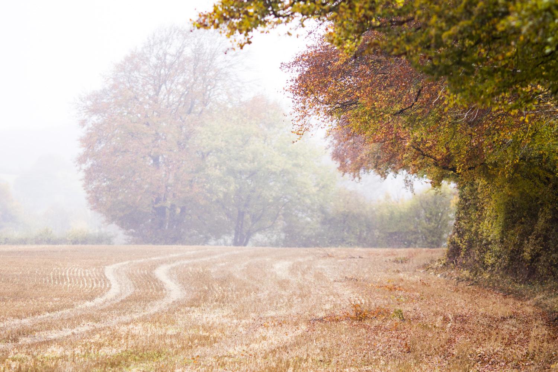 Oxfordshire ridgeway blogger walk 6