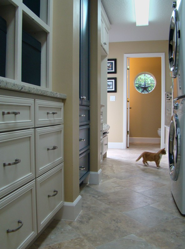 Kitty in the Laundry Room Resized.jpg