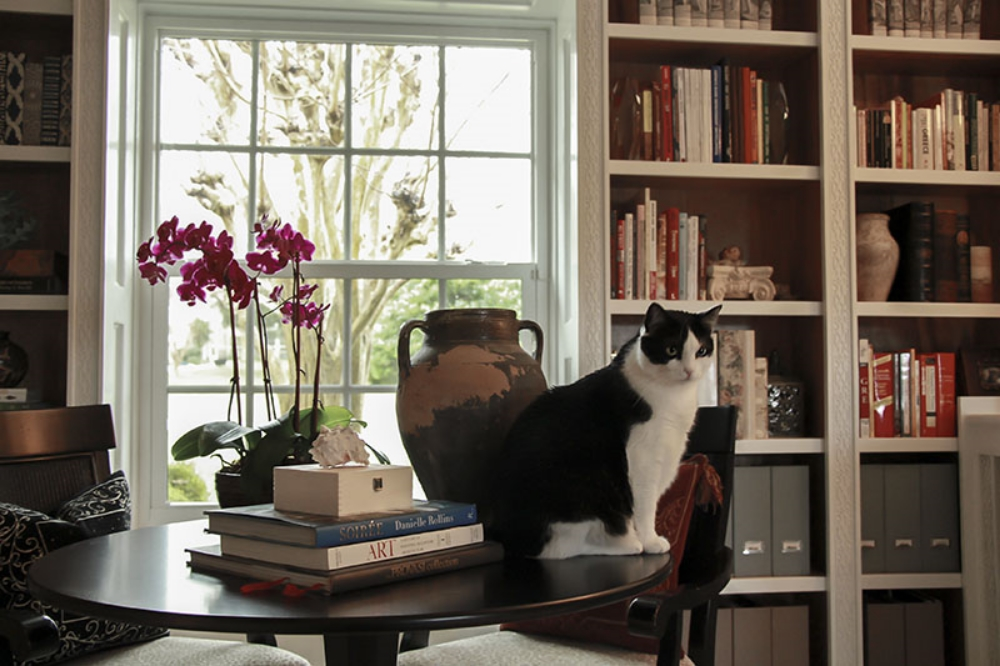 Kane Interior Design_Custom Library Project 3.jpg