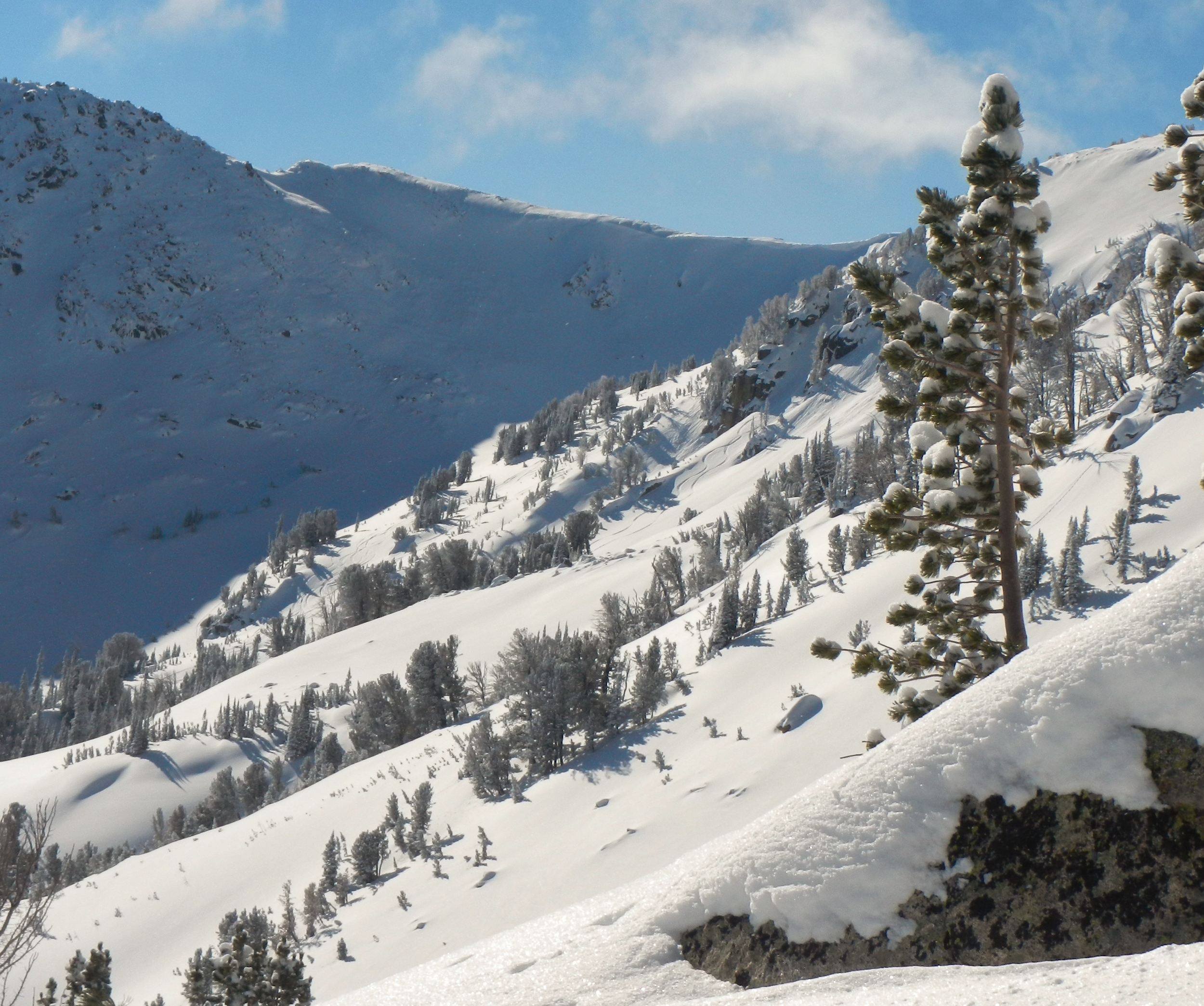 Backcountry ski terrain for every taste and ability.