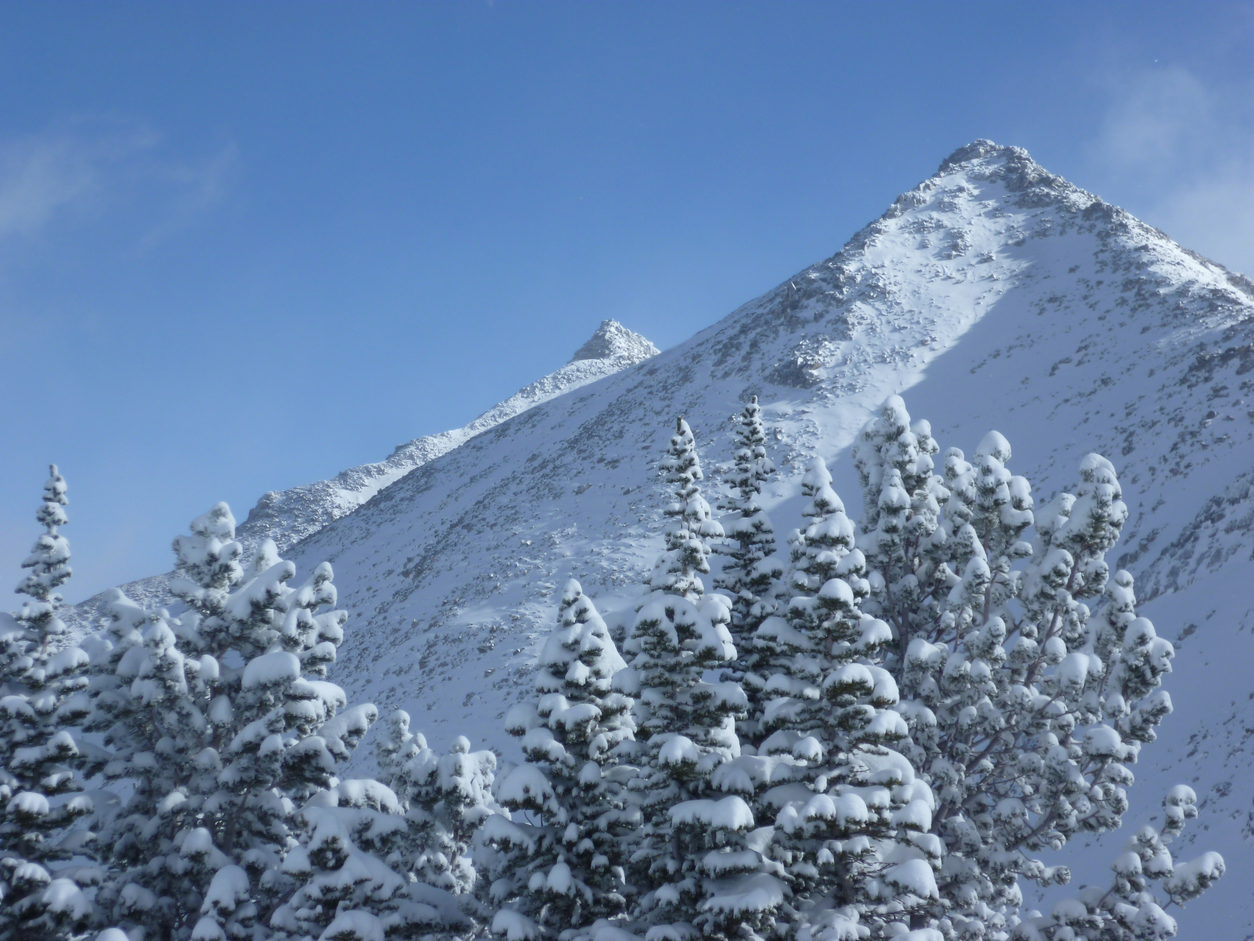 Fresh snow and fun: Bell Lake delivers.