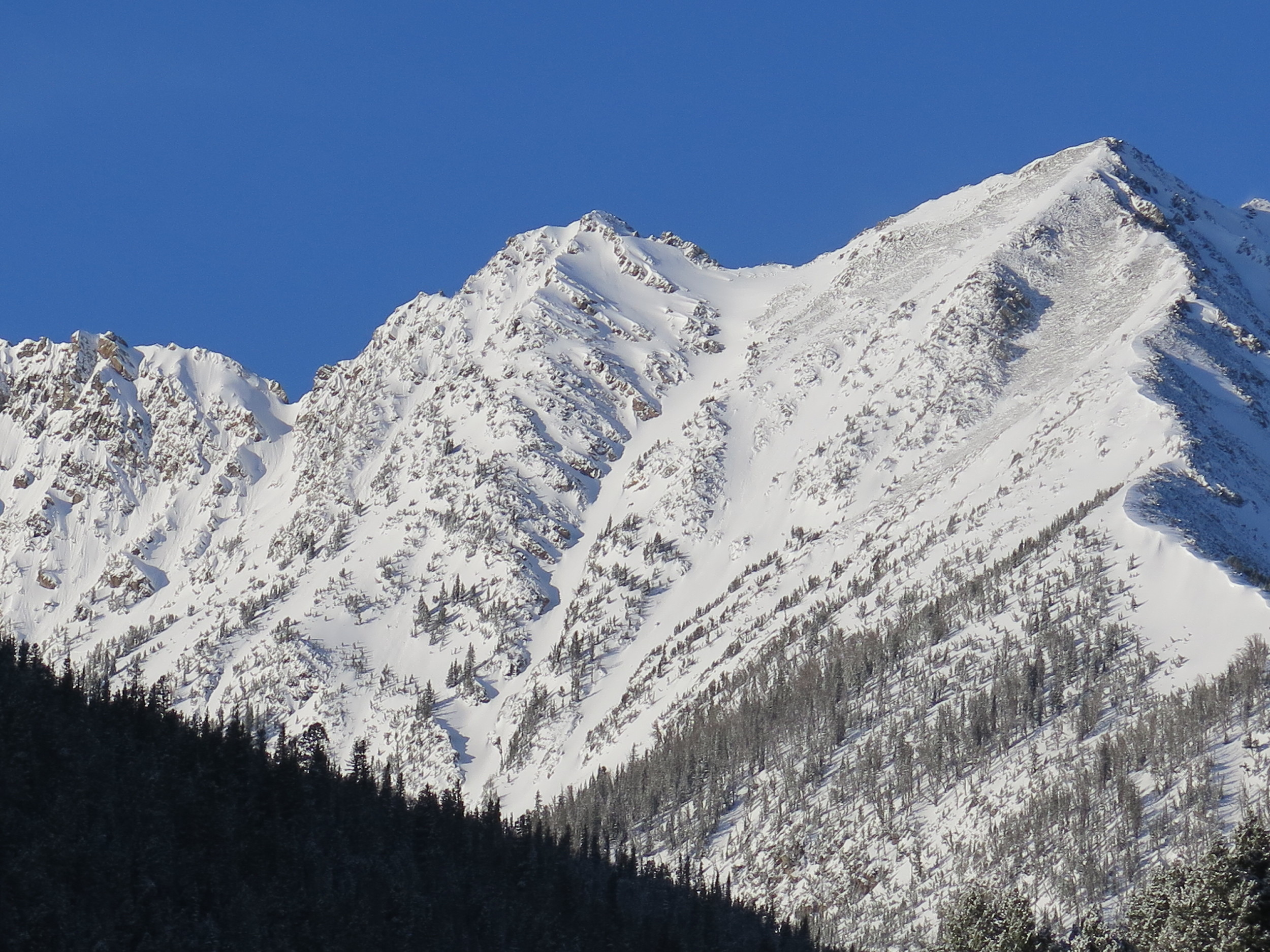 Big Sky Backcountry Guides awesome terrain!