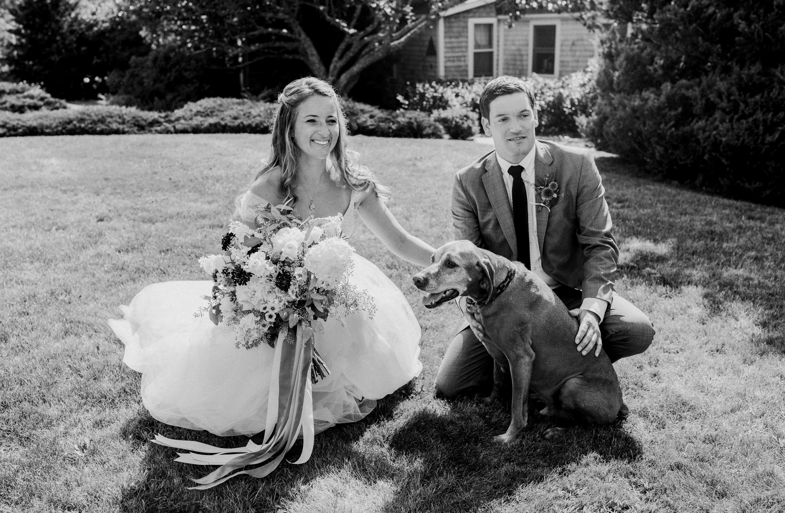A bride and groom kneel with their dog at the Bradley Inn
