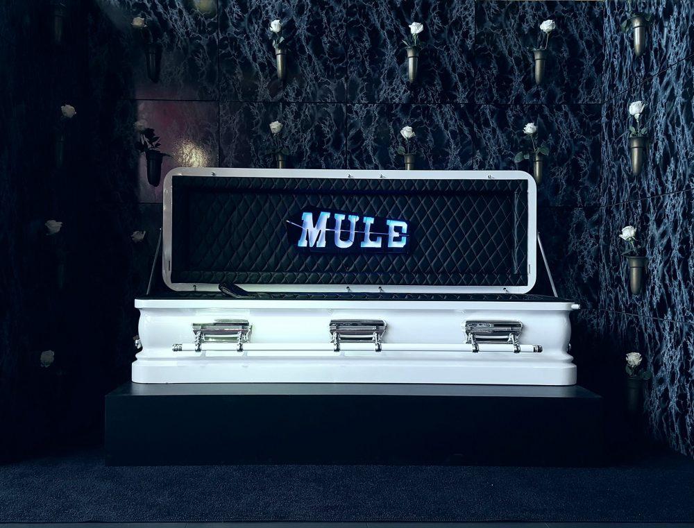 mule-1000x761.jpg