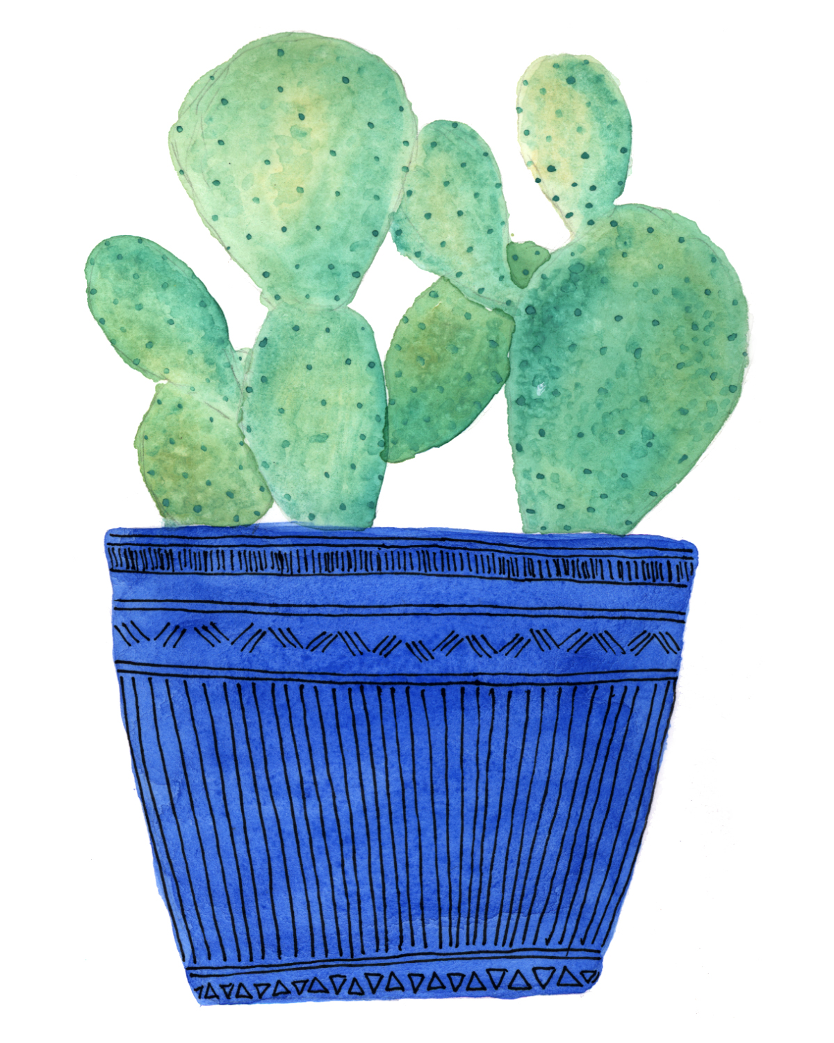 potted cactus.jpg