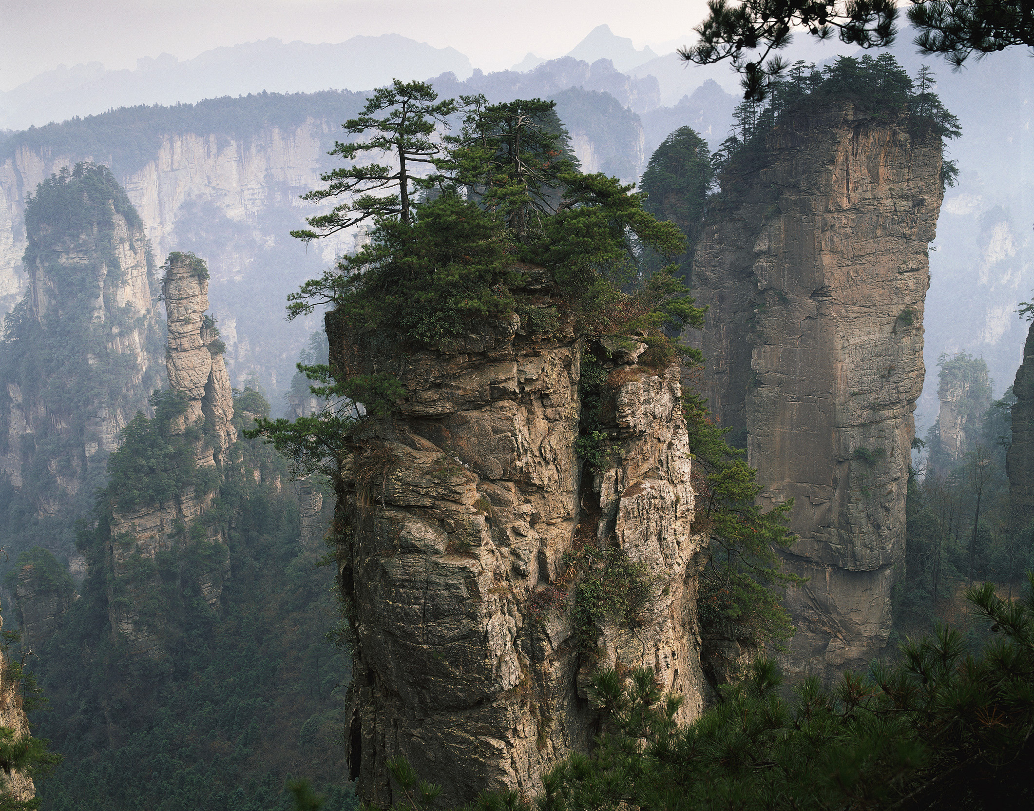 nature-mountains-rock-terrain-rocks-rocks-hills-plants-undergrowth-grass-wood-trees.jpg