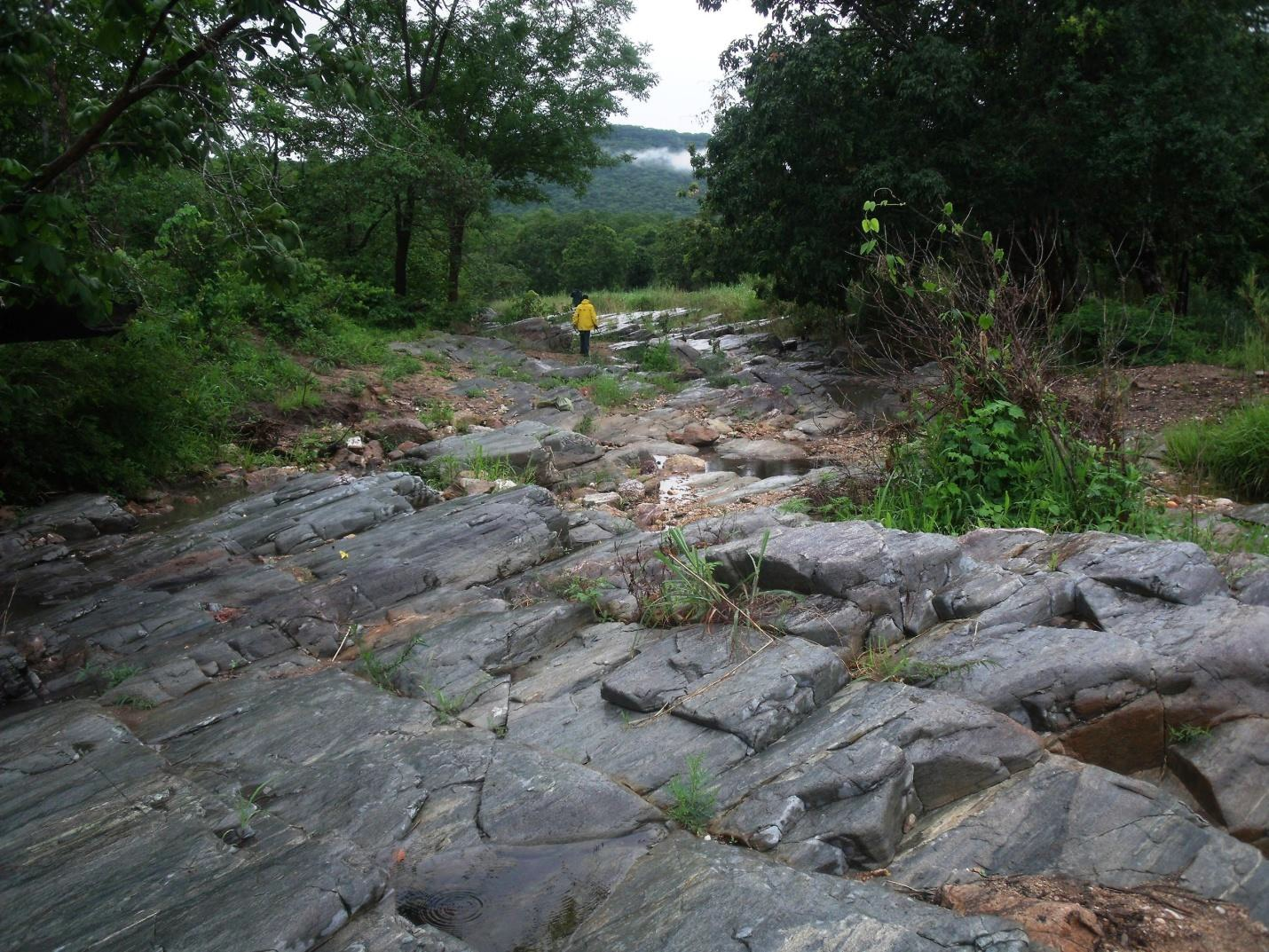 PL-9854-Granitic-Gneiss-Exposed-Along-The-River.jpg