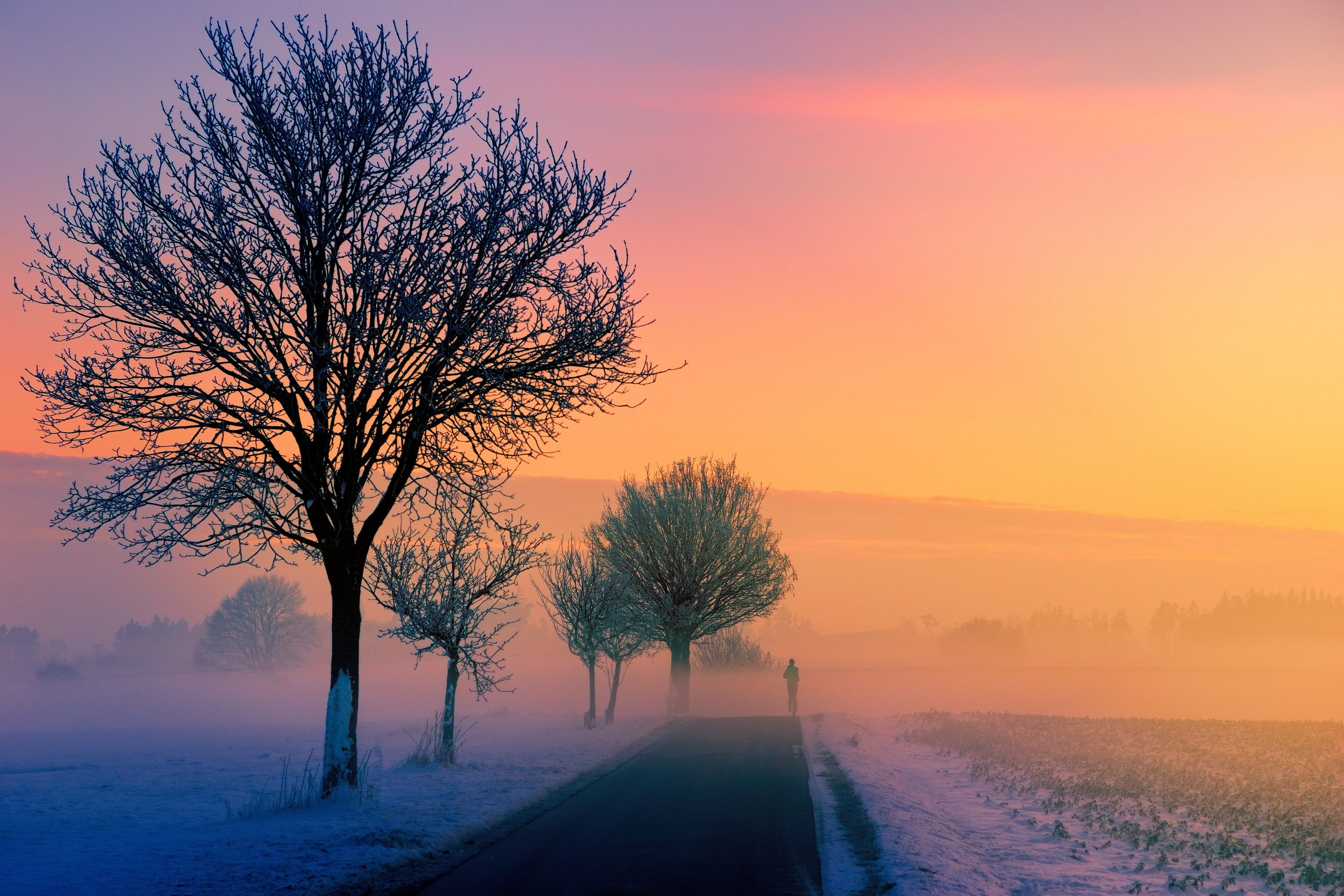 cold-dawn-outdoors-1114880.jpg