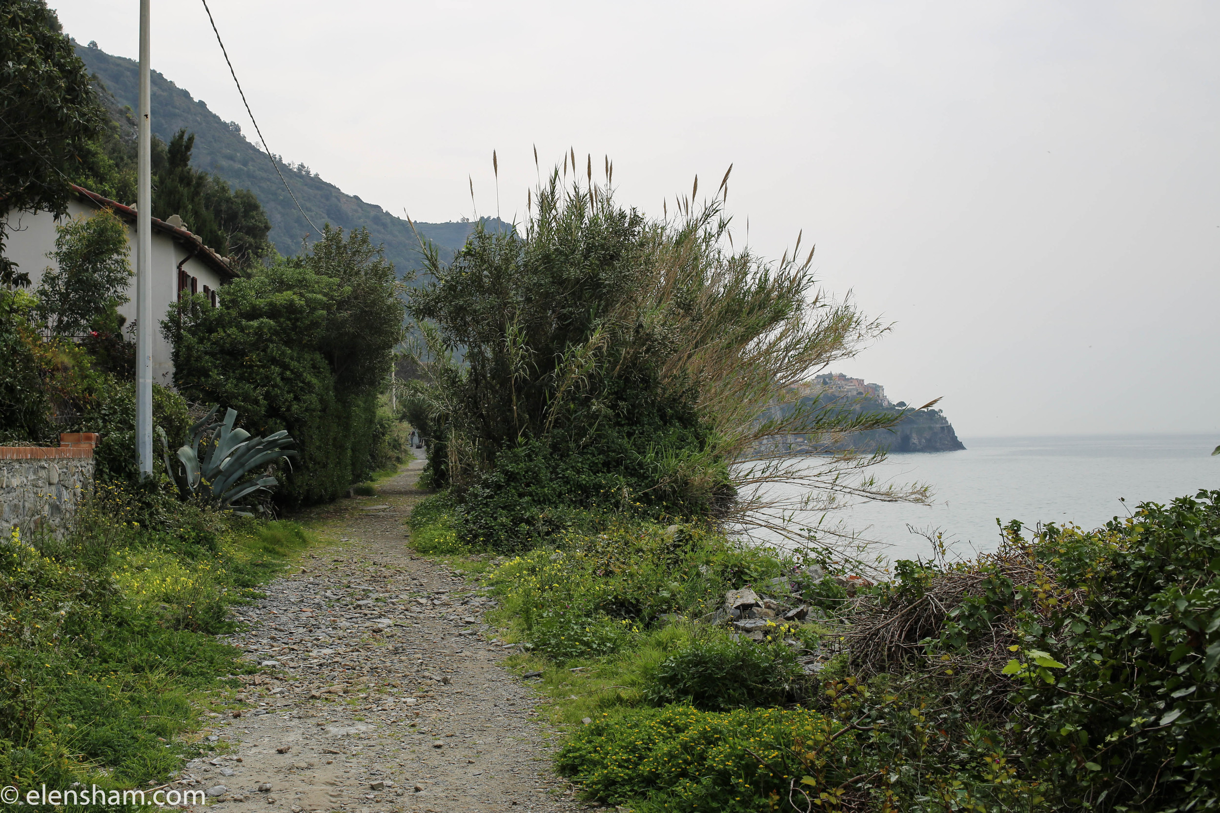 That's the last image on the way to Manarola before we had to go back.