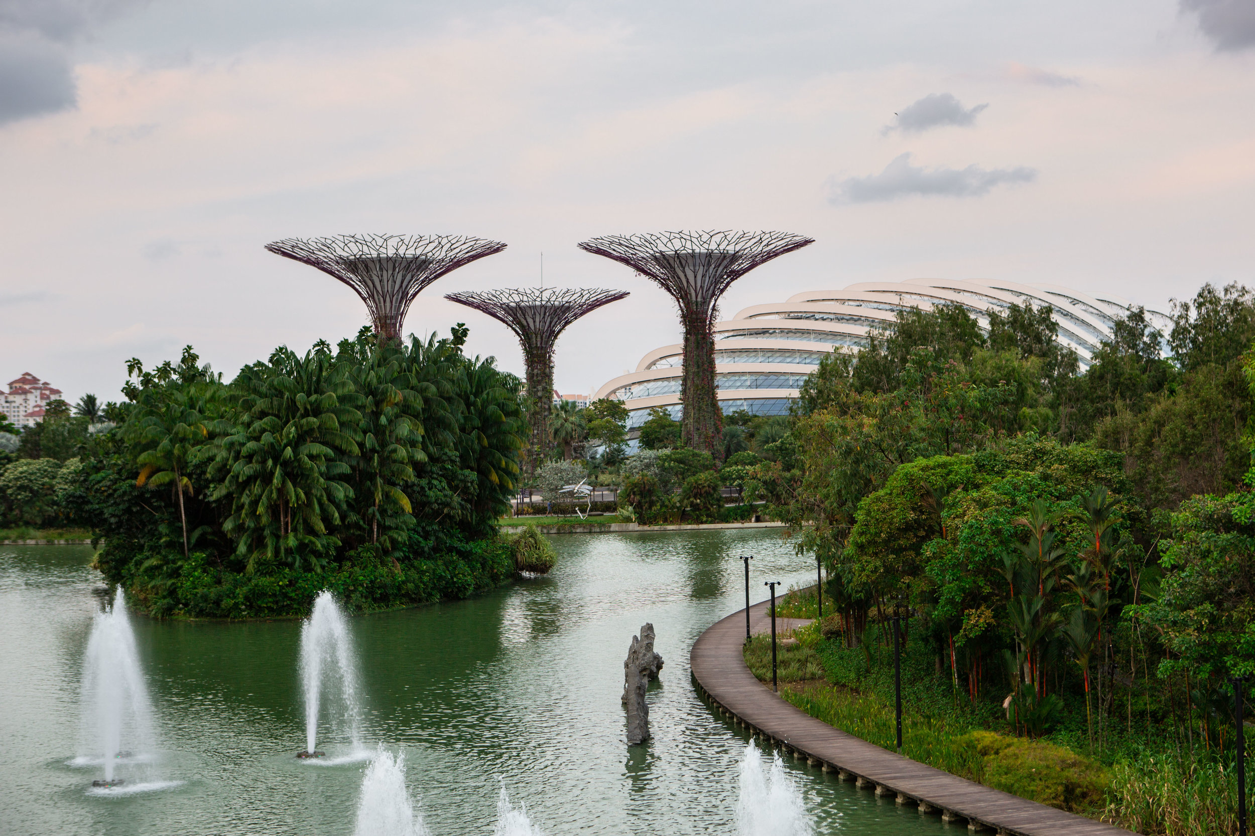 Singapore Garden's by the bay
