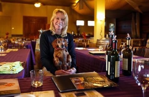 dog friendly gershon bachus vintners