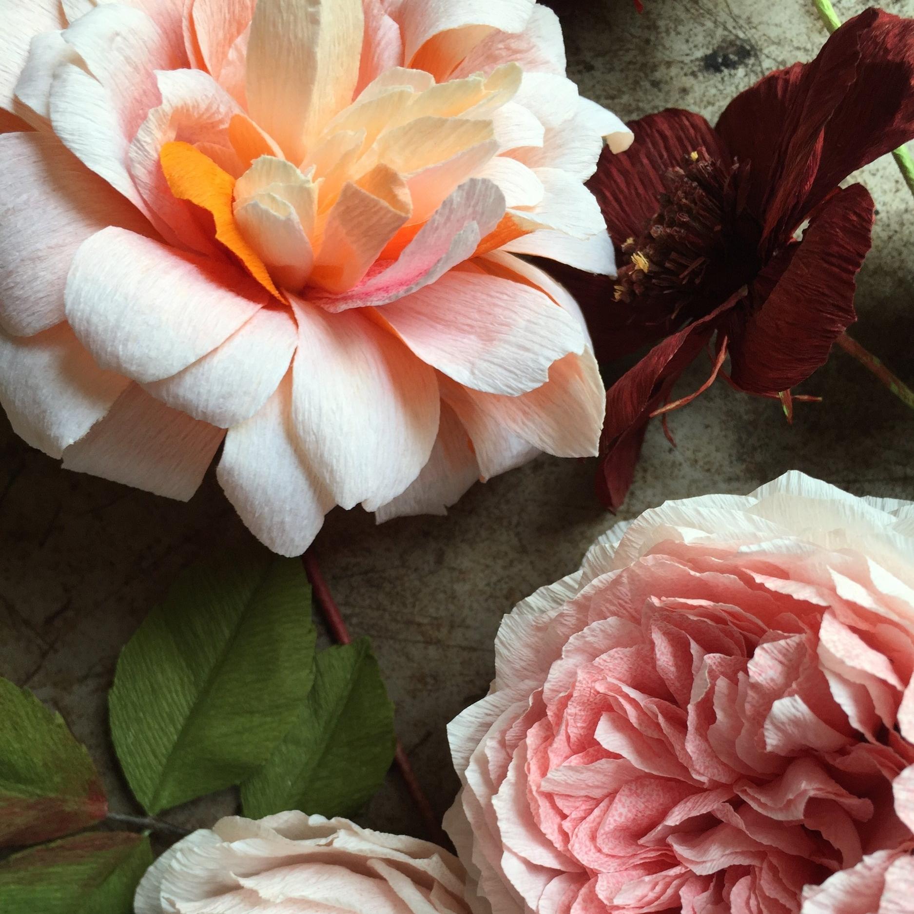 Some beloved roses