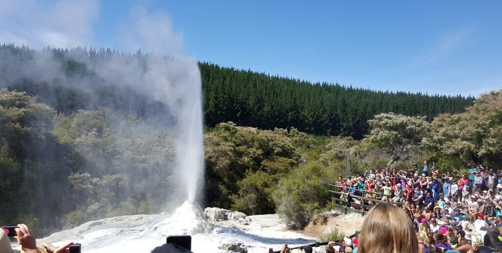Rotorua & Taupo -