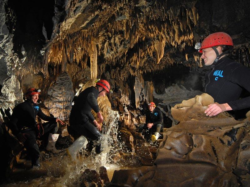 Waitomo Cave1.jpg