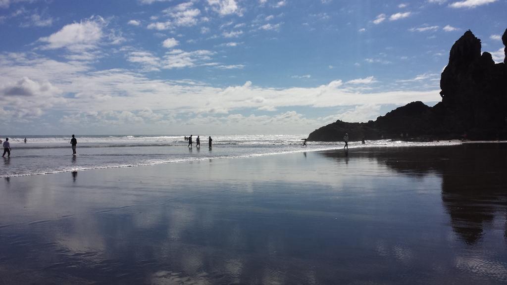Piha Surf Beach