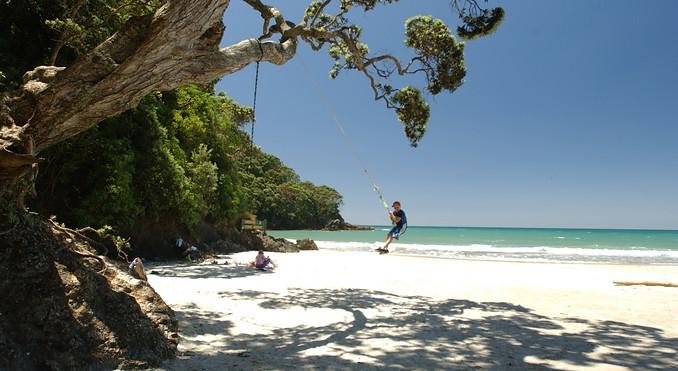 waihi beach swing.jpg