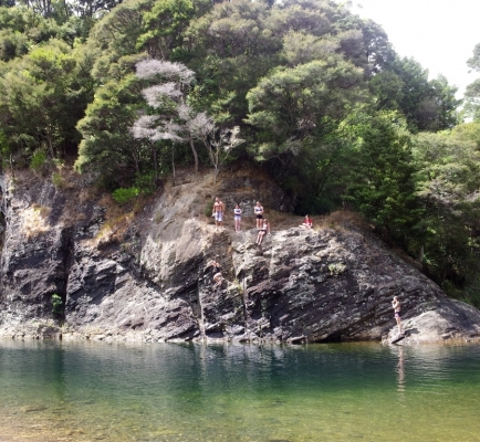 Kauaeranga Valley river.jpg