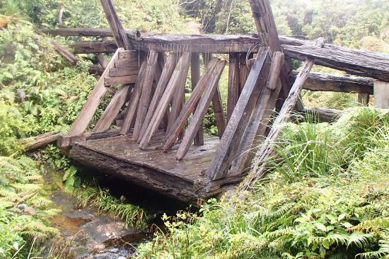 kauaeranga-valley-kauri dam.jpg