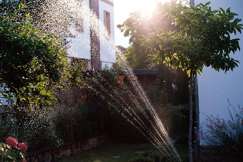 Water Sprinkles. Leica M6 TTL w/ 50mm Cron Version III.