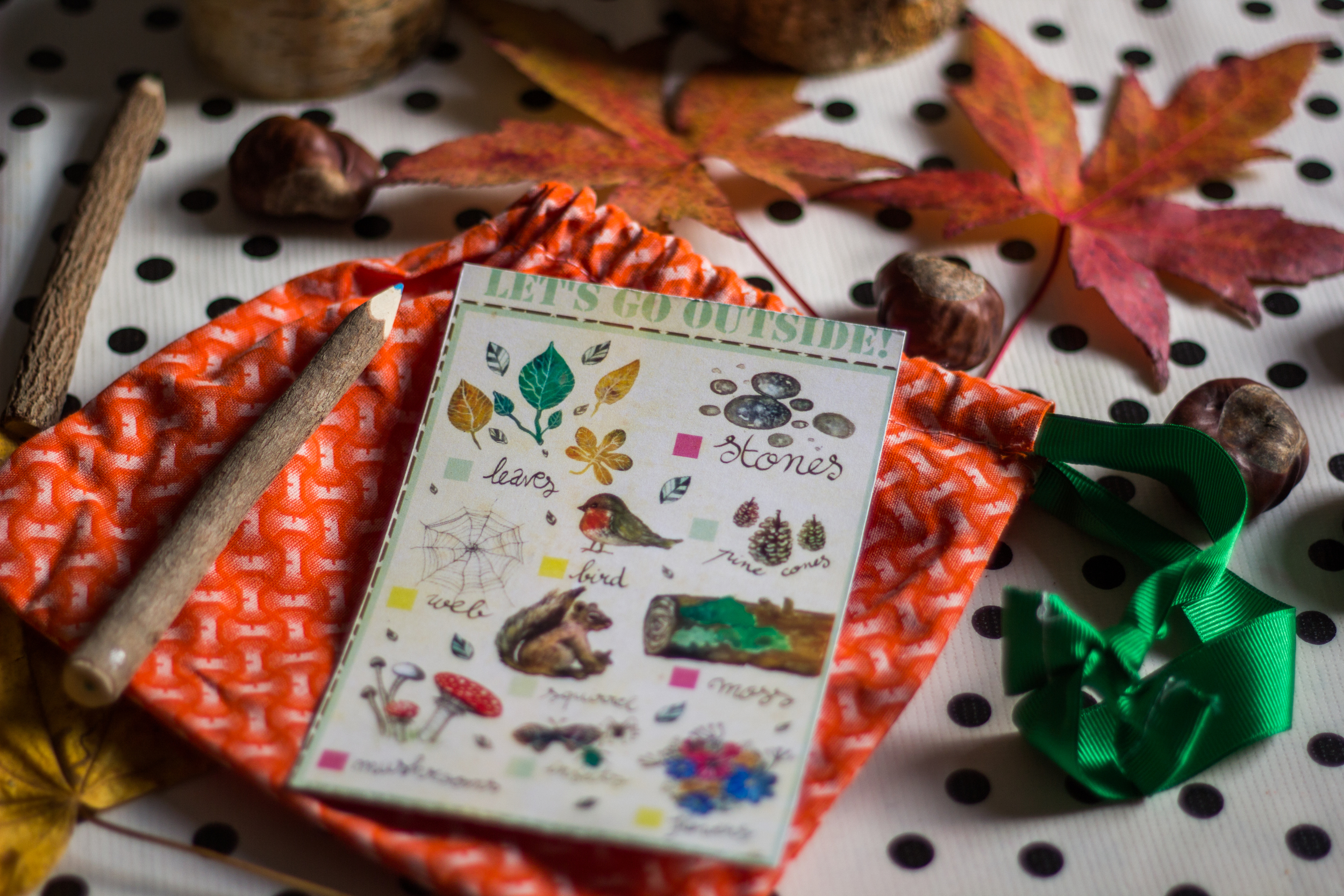Nature Bingo for young Children by Emile Maguin for Seeds and Stitches