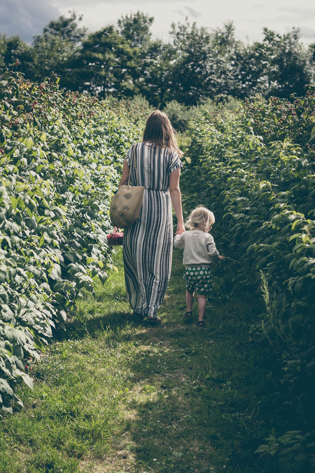 Fruit Picking | Seeds and Stitches blog