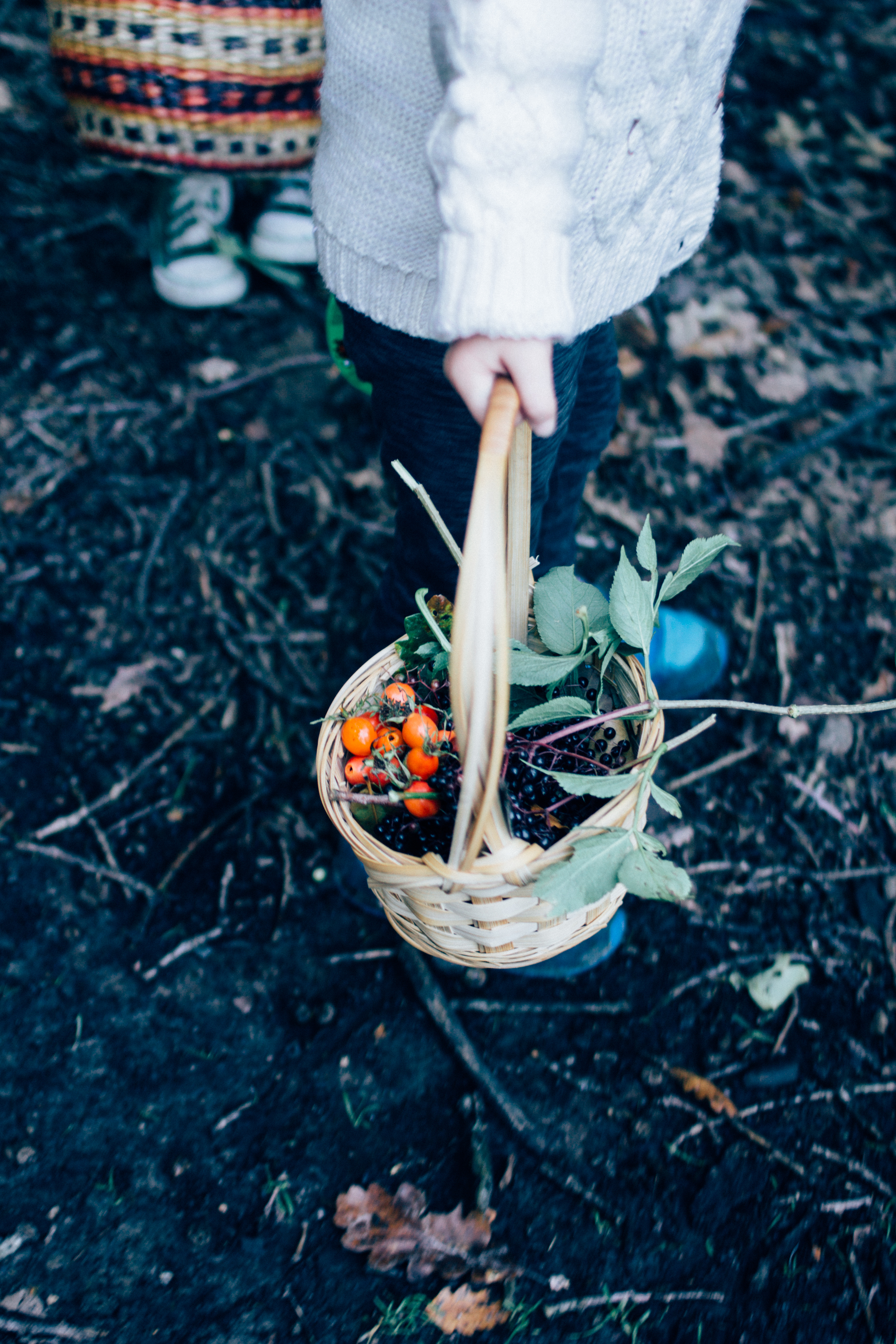 walk in the woods | Seeds and Stitches blog-31.jpg