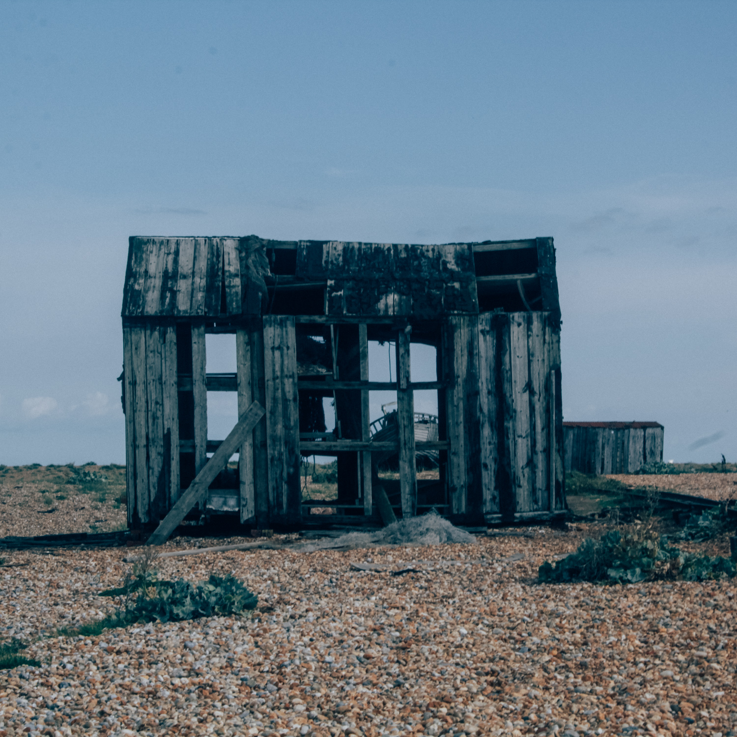 Dungeness | Seeds and Stitches-29.jpg