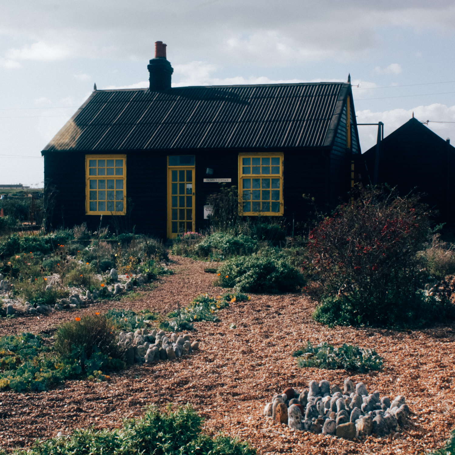 Dungeness | Seeds and Stitches-26.jpg