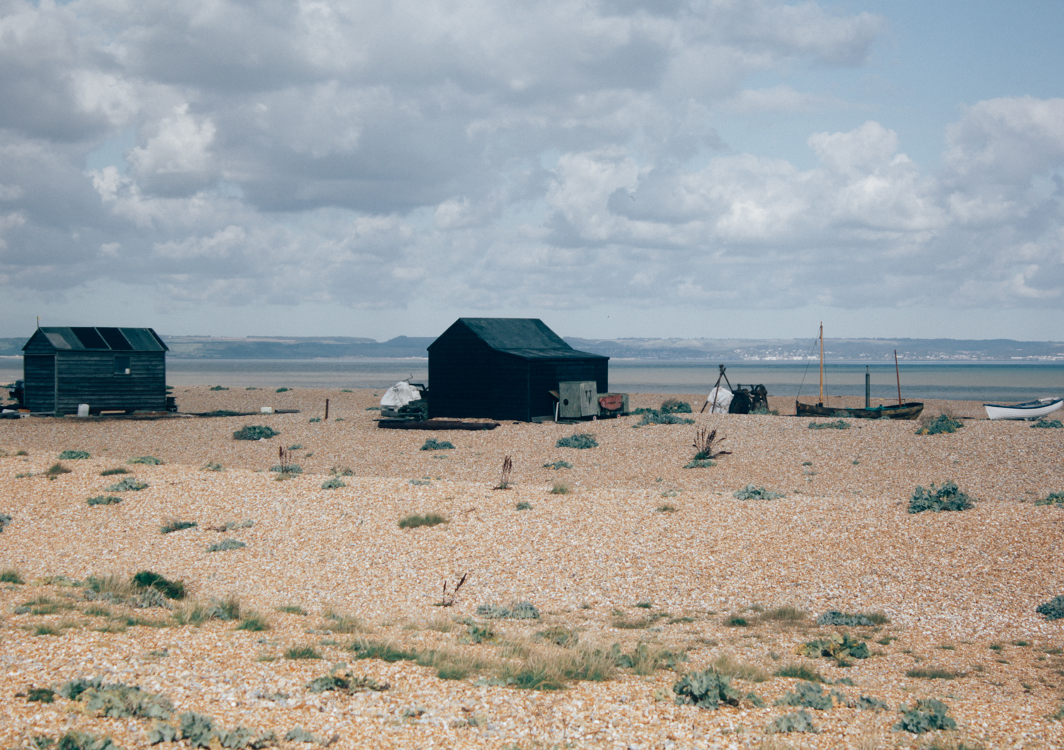 Dungeness | Seeds and Stitches-34.jpg