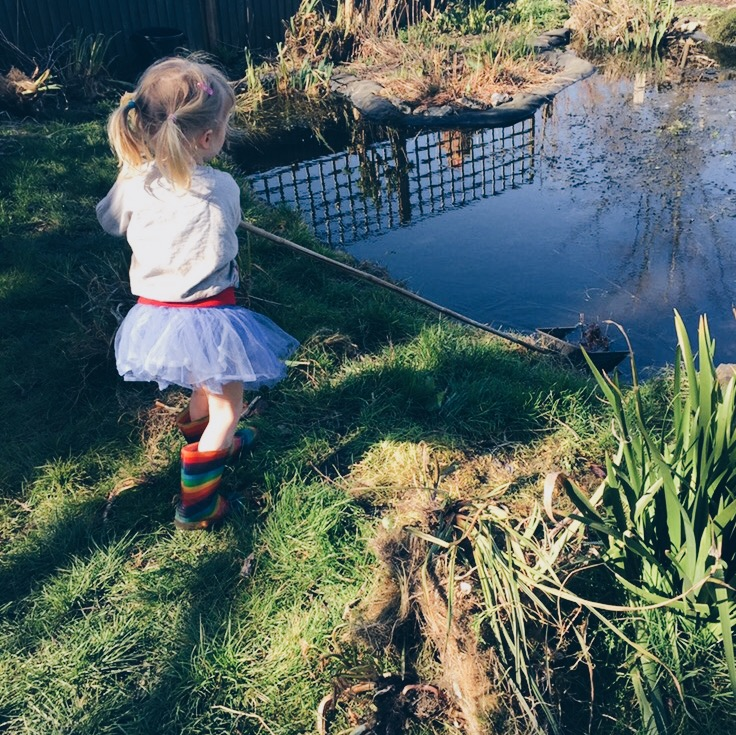 Pond Dipping | Seeds and Stitches blog