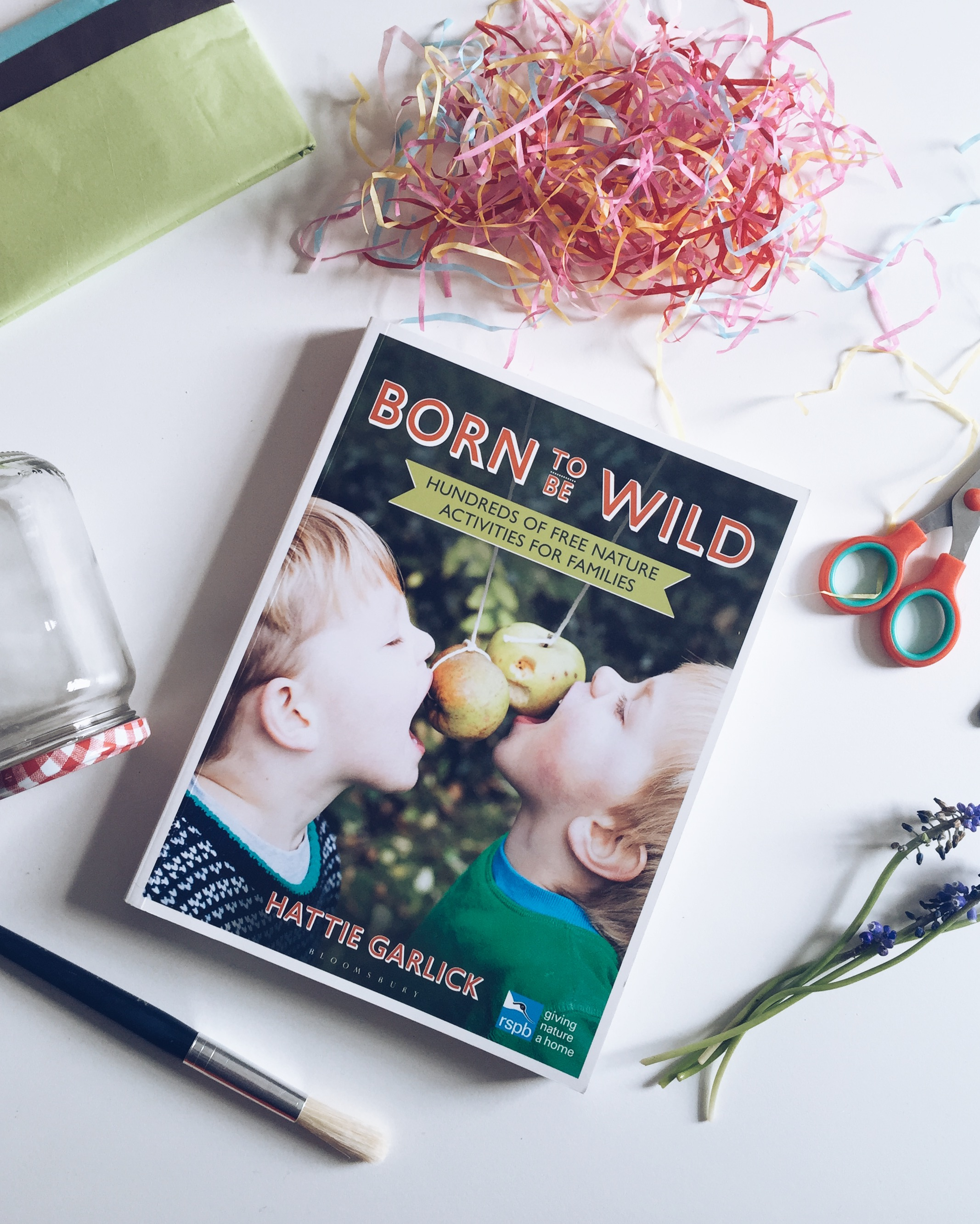 Born To Be Wild Book | Seeds and Stitches blog