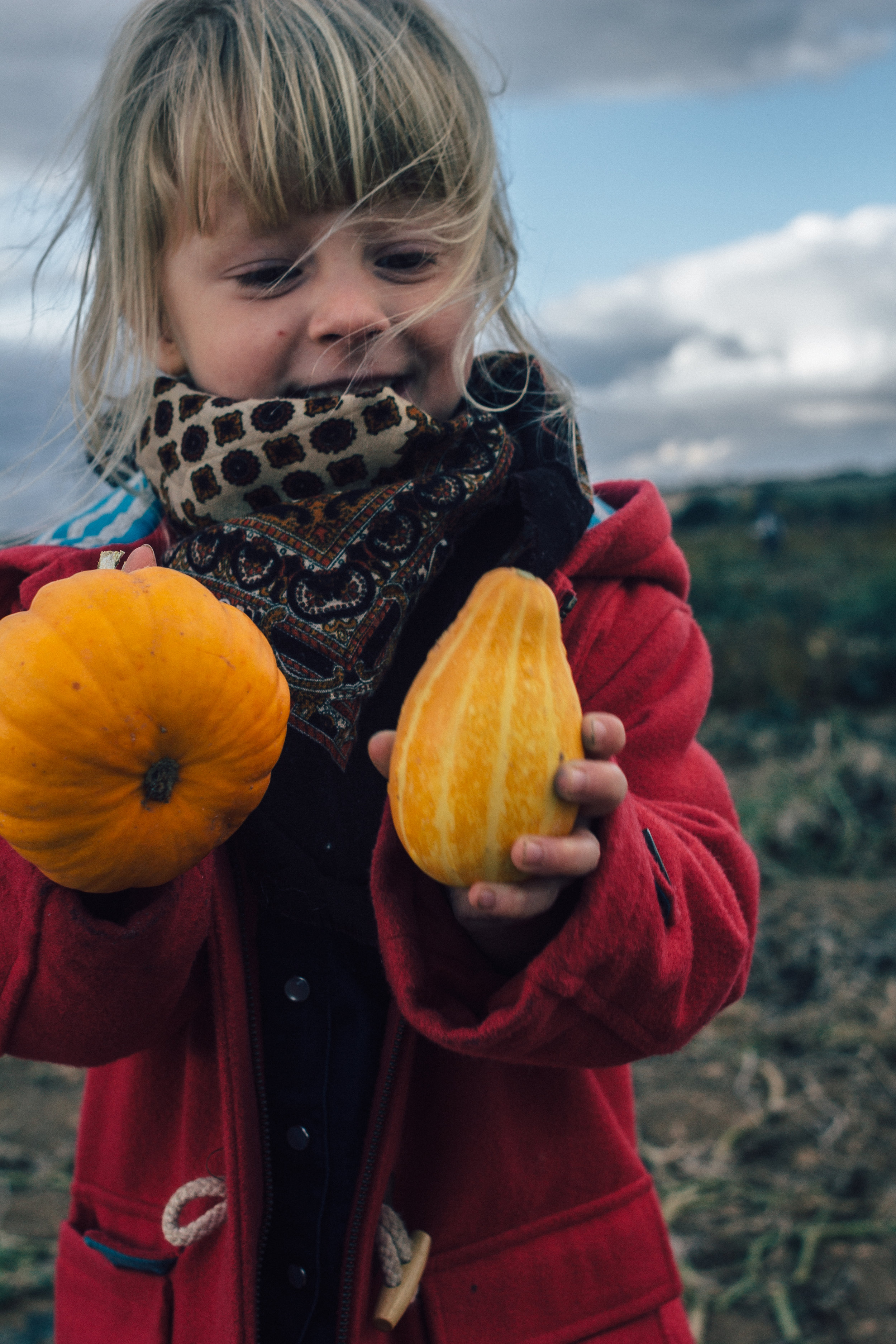 Autumn Rituals | Seeds and Stitches blog