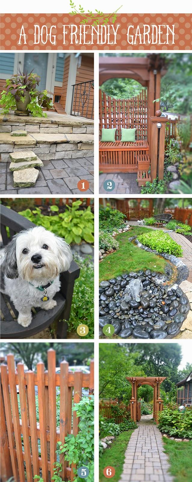 Dog+Garden.jpg