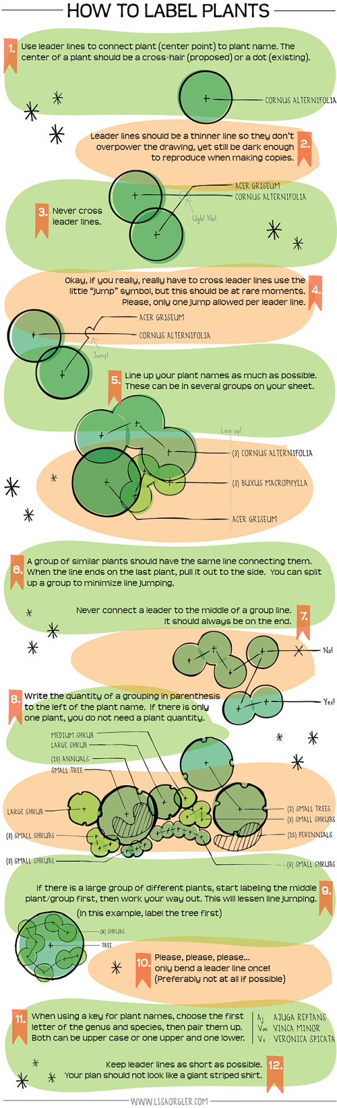 How+to+Label+Plants.png