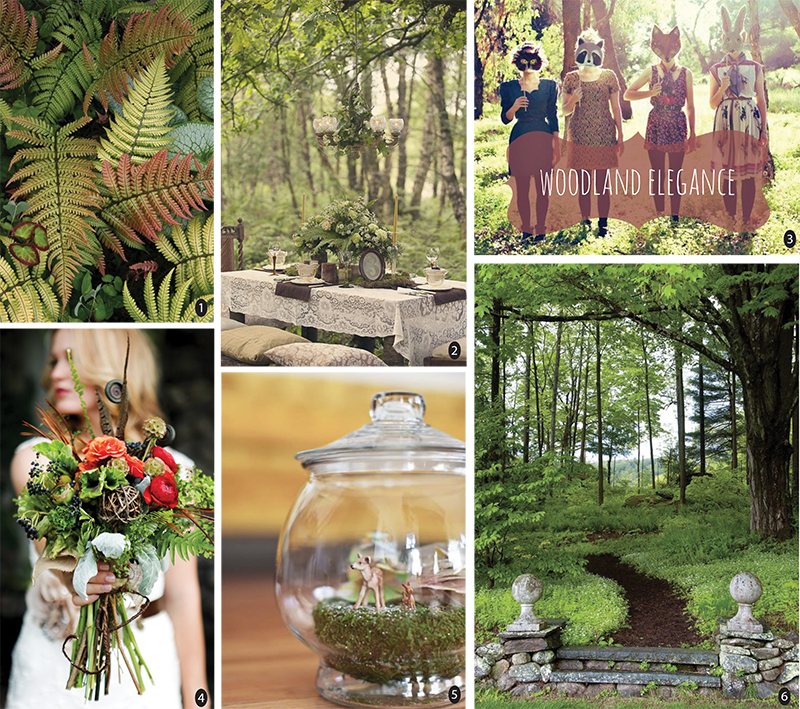 photos via 1. heraldnet(dryopteris lepidopoda) , 2. love my dress  ( clare west photography ), 3. casey wasey bear , 4.  wedding chicks , 5.  smile and wave  (post by janae hardy), and 6.  design new england .