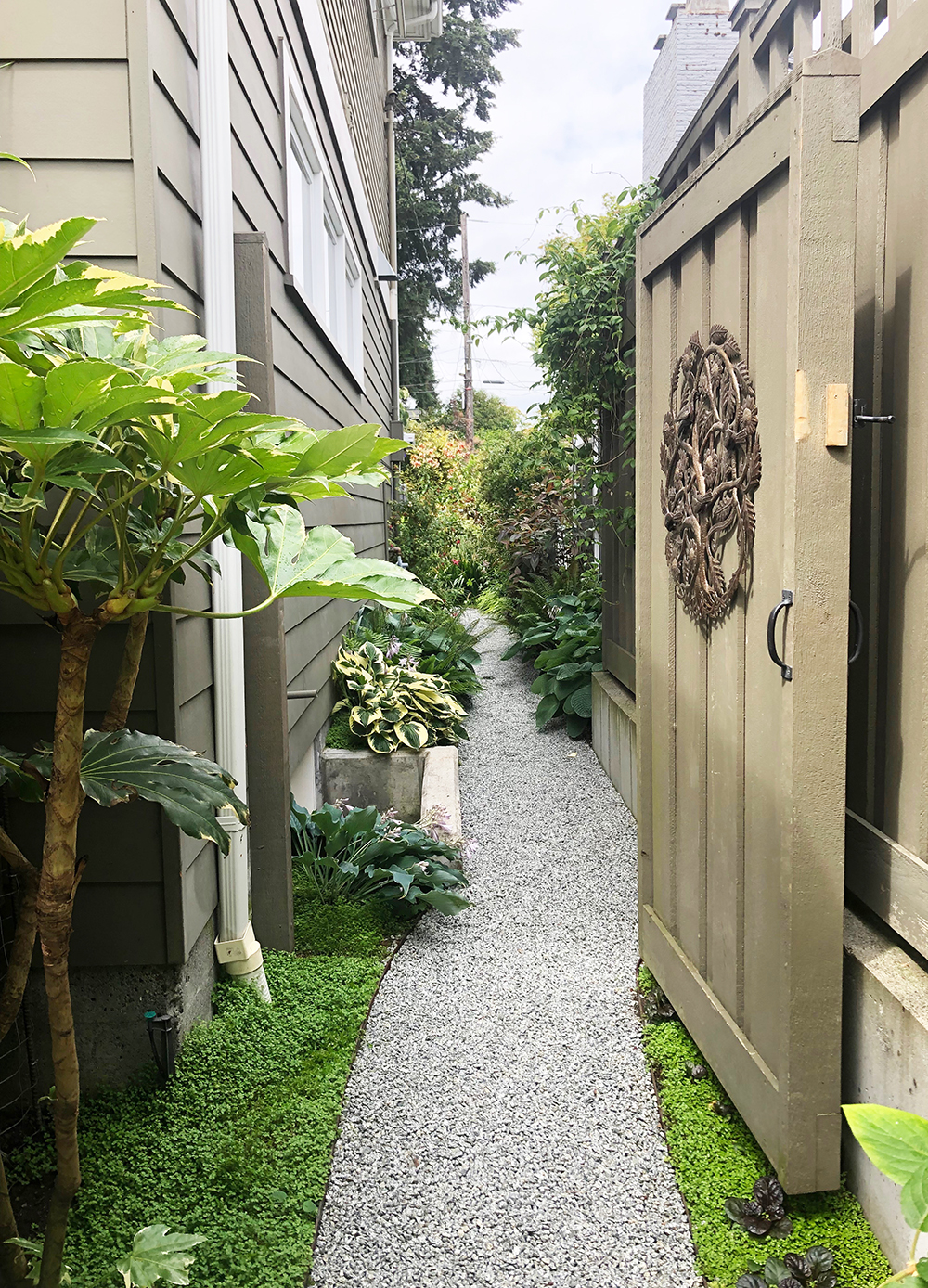 A tight and tidy side yard in Seattle, Washington