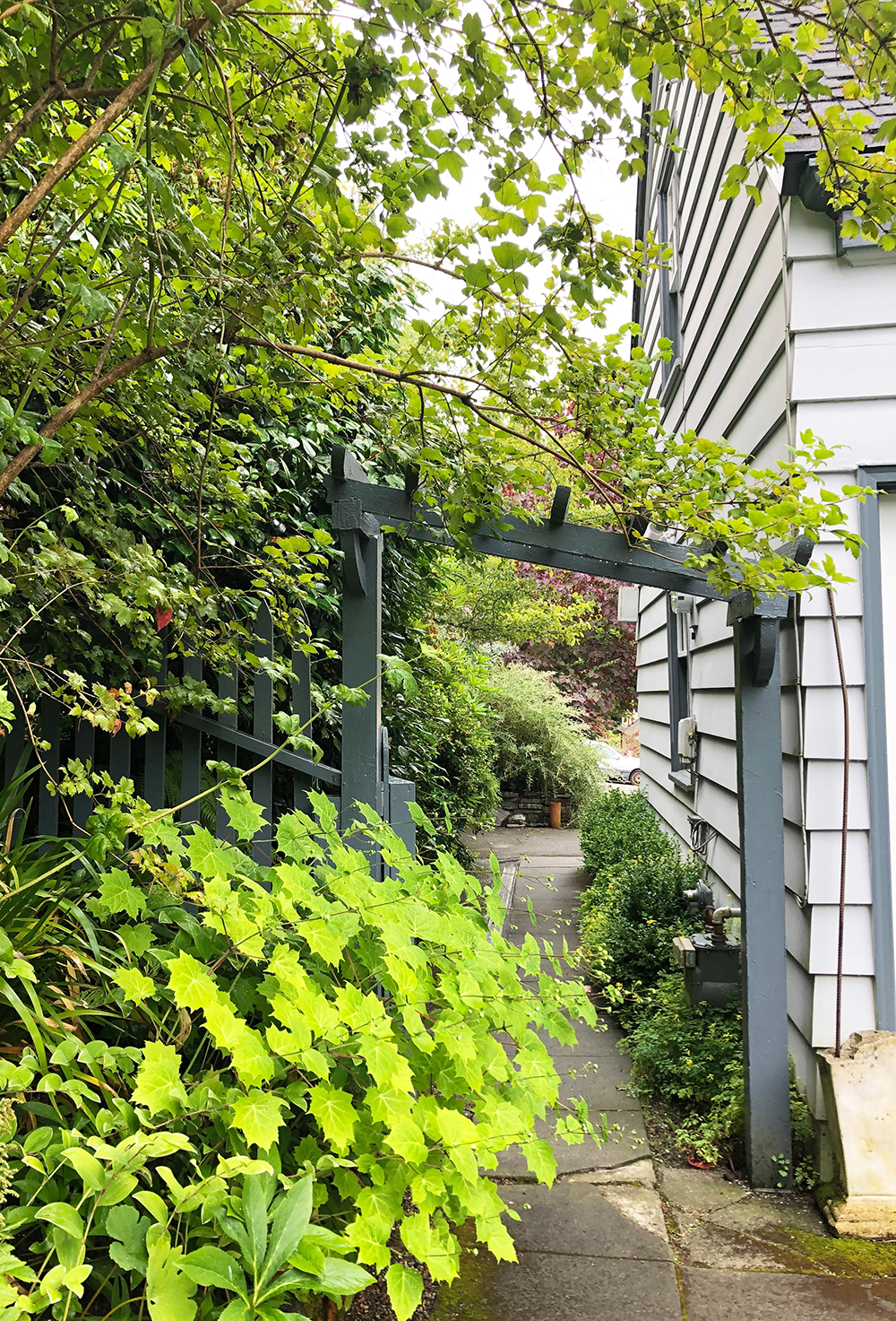 A sweet arbor welcomes visitors into this Boston side yard