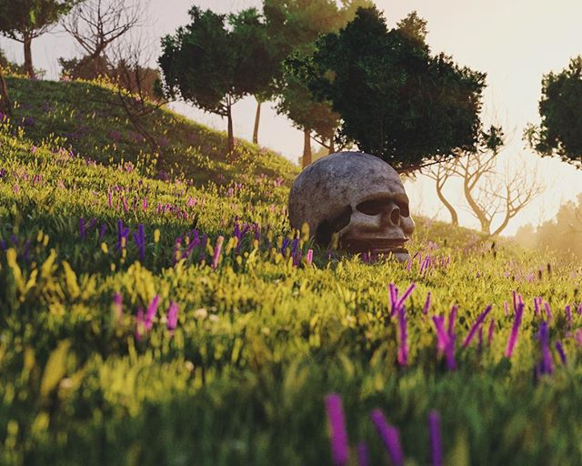 Playing at crafting foliage . . . . #Cinema4d #c4d #maxon #3d #render #Still #Motiondesign #motiondesigner #Mograph #effects #octane #otoy #landscape #foliage #weeds #skull #cool #realistic #wip #workinprogress #field #trees #generator