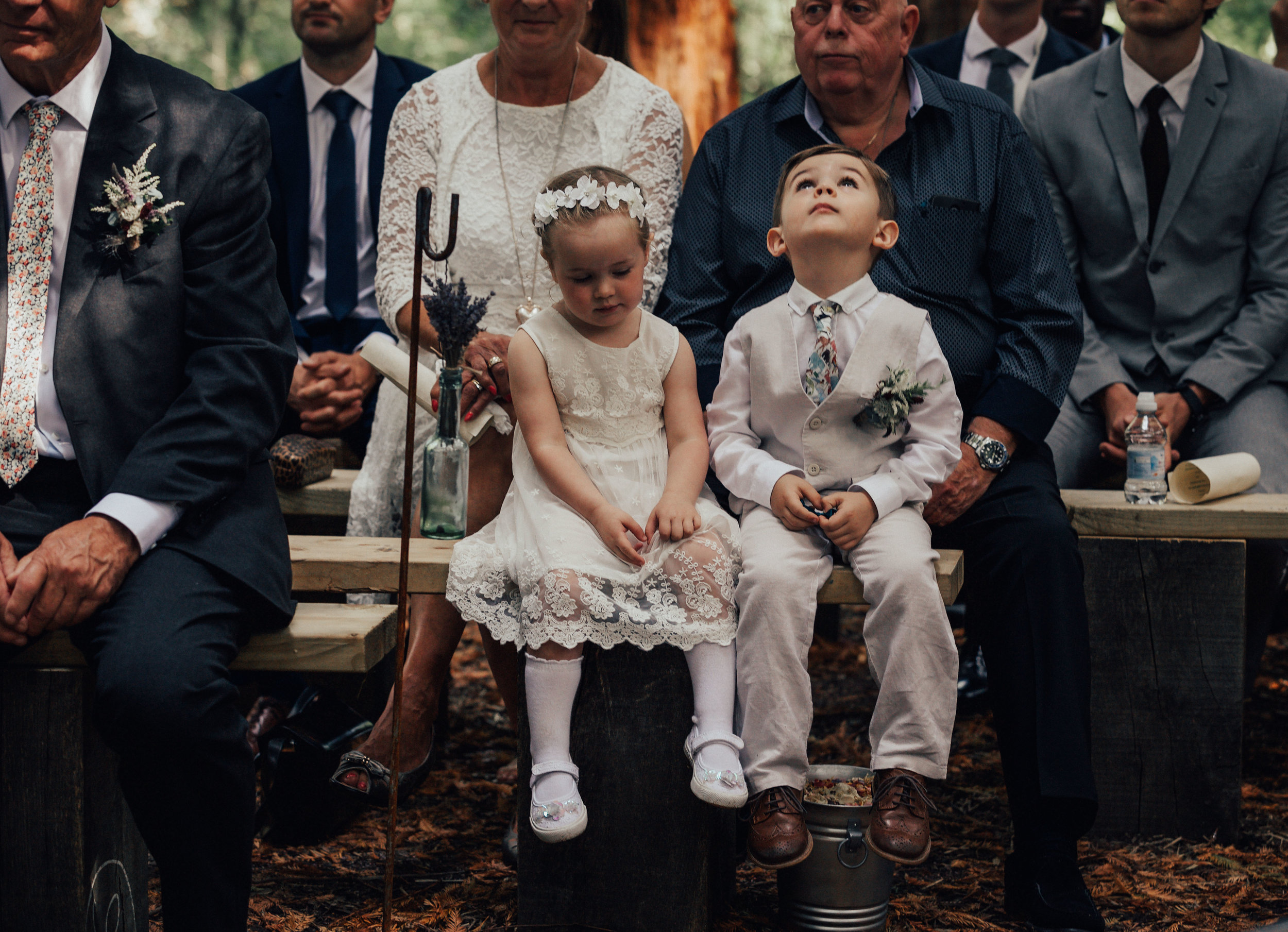 TWO_WOODS_ESTATE_WEDDING_PULBOROUGH_PJ_PHILLIPS_PHOTOGRAPHY_FRAN_&_GEORGE_74.jpg
