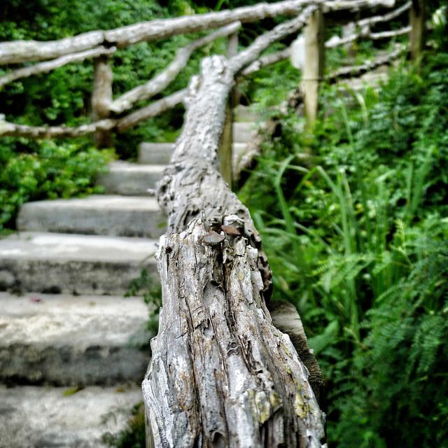 pathway_steps.jpg