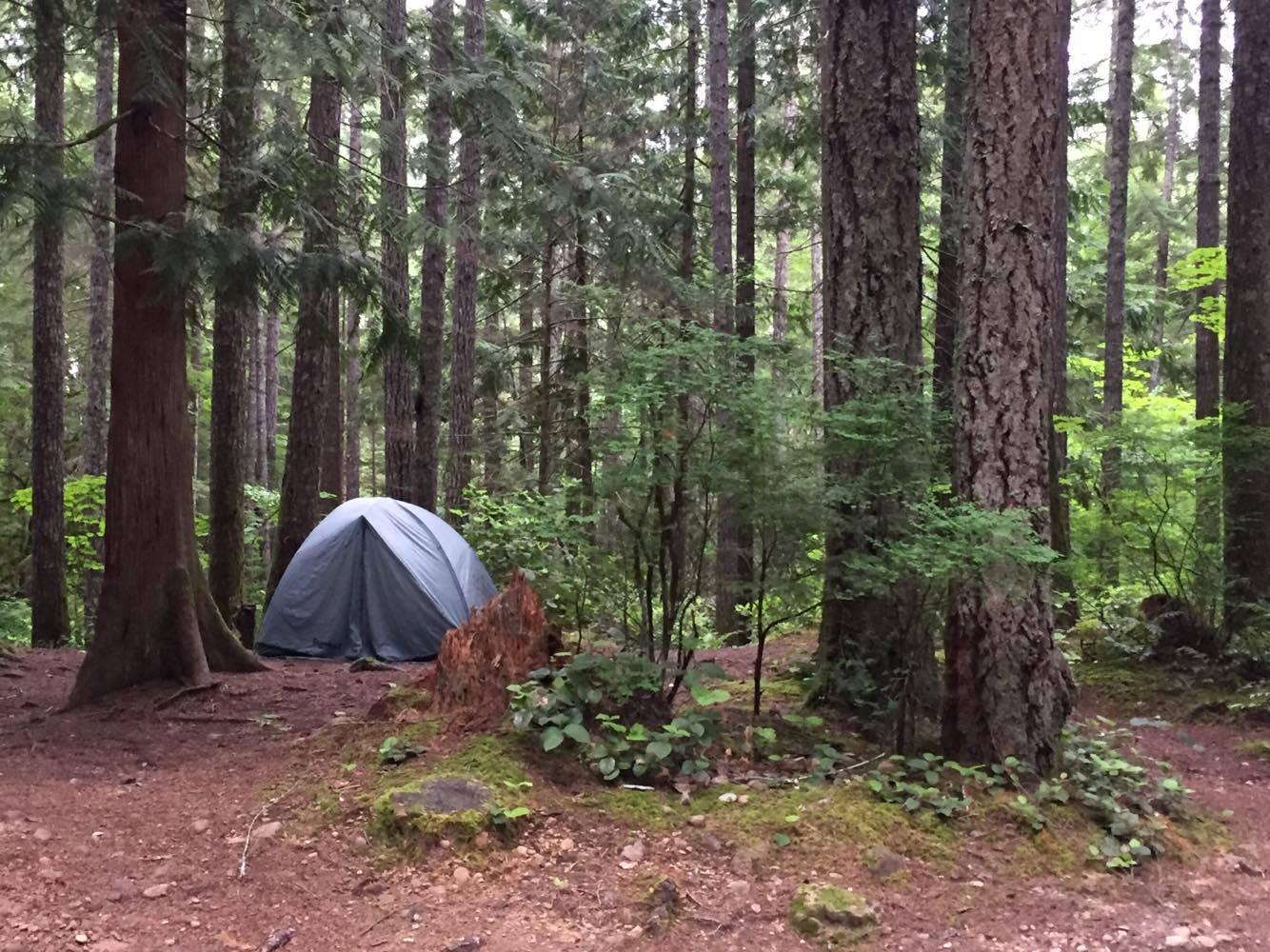 Brotherhood--Campground.jpg