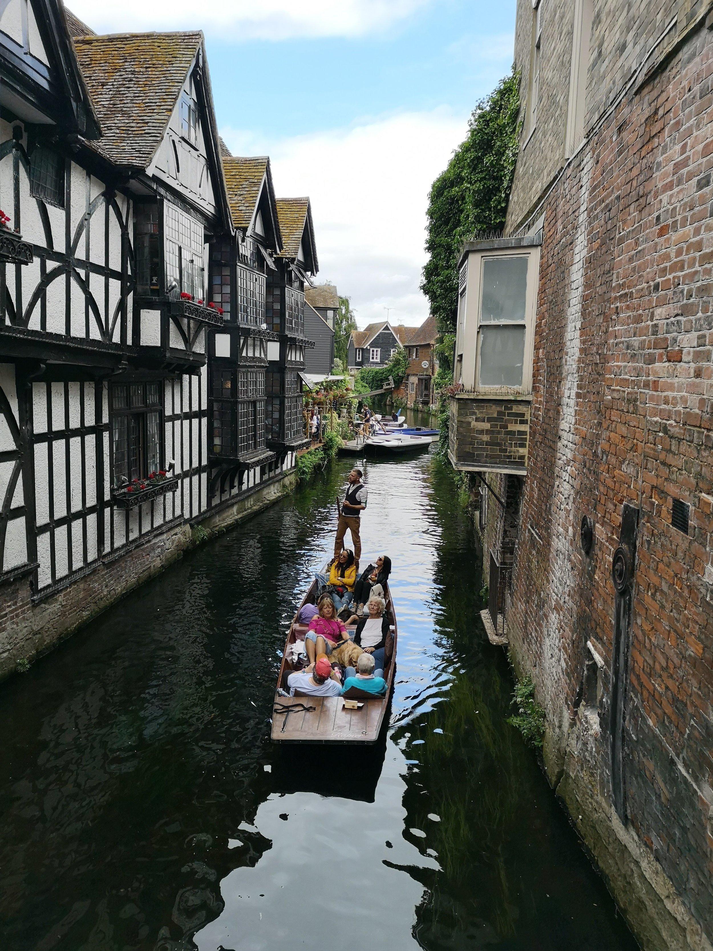 Canterbury Bunt