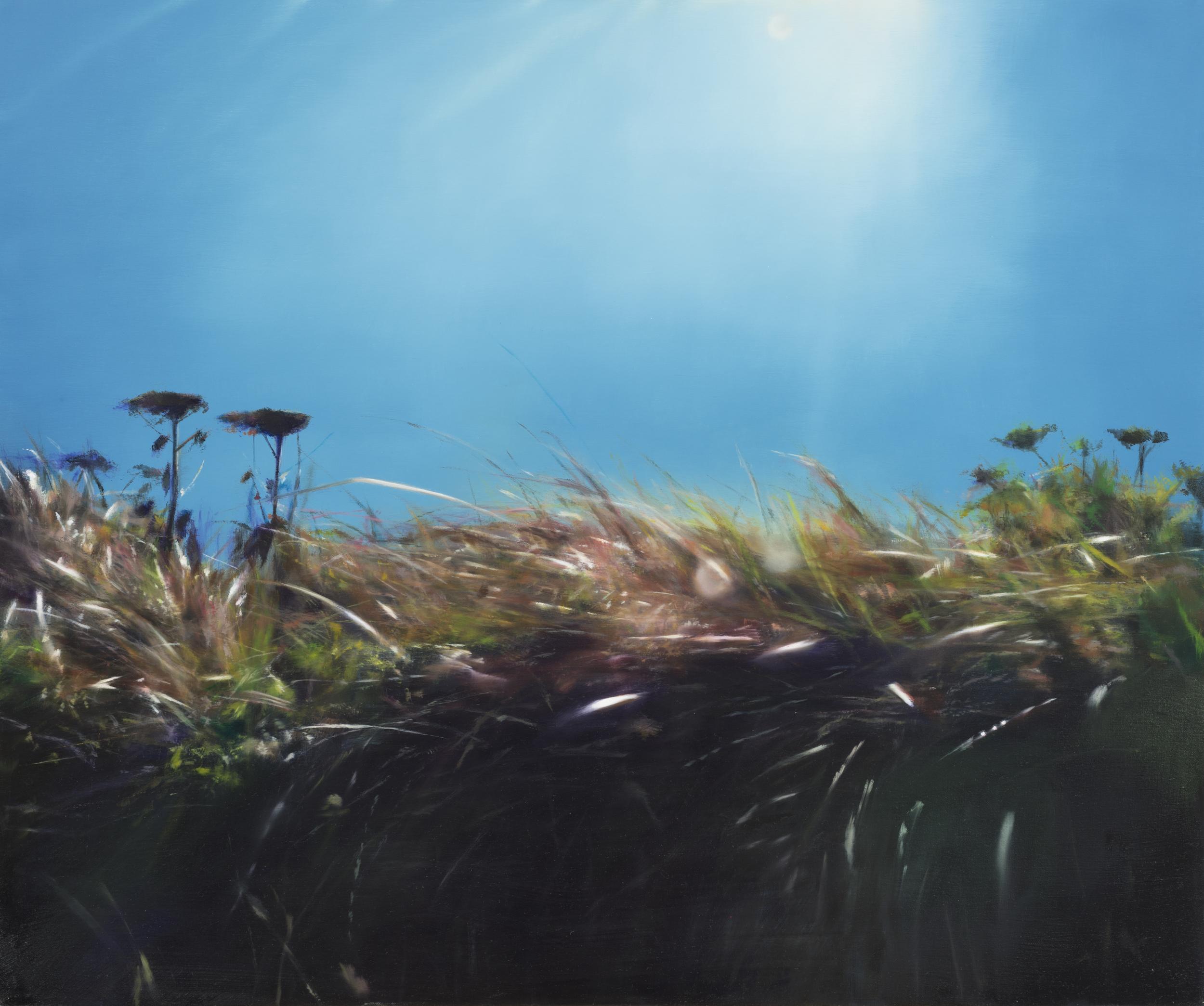"turf  •  30"" x 36""  oil on canvas  2013"