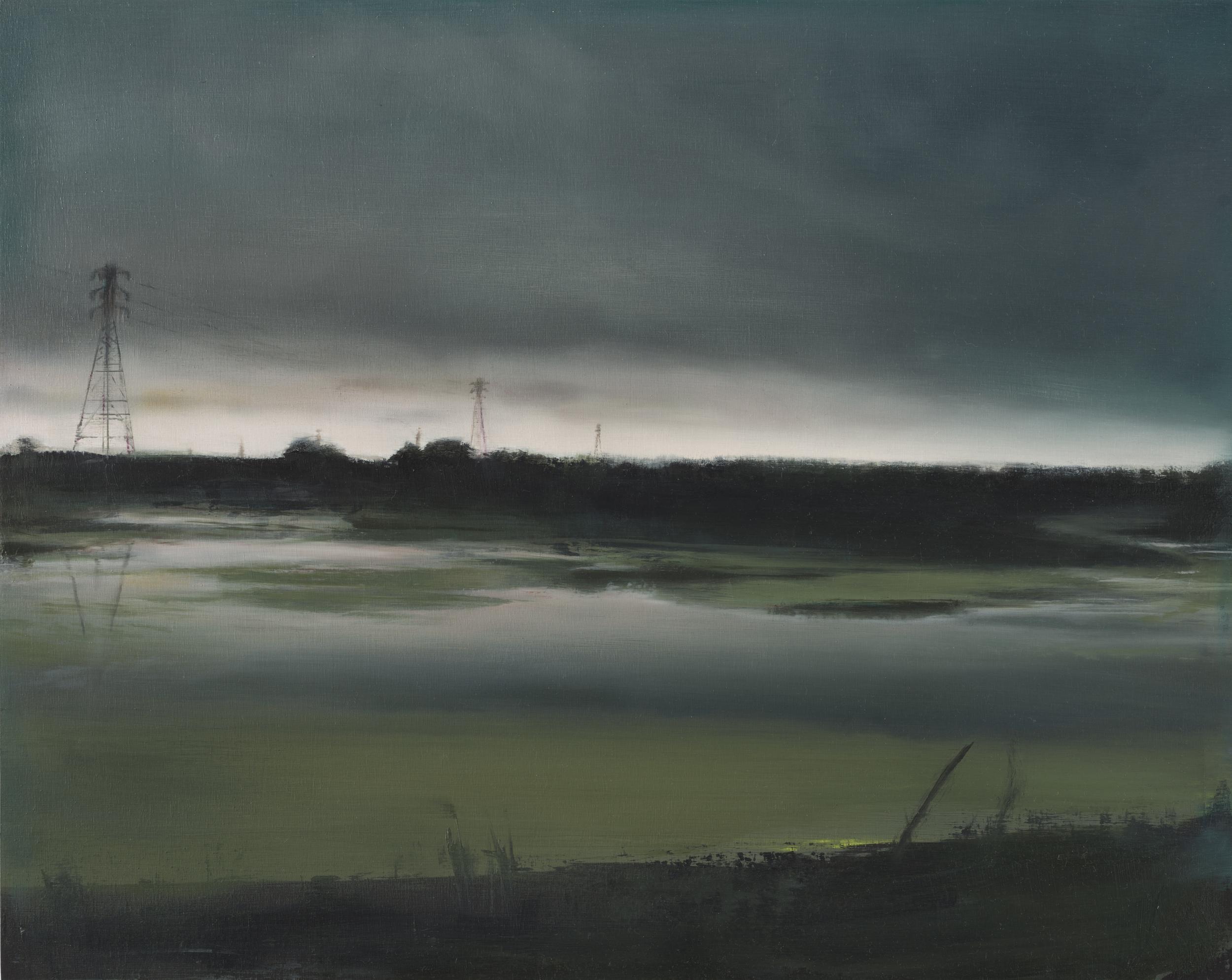 """marsh •  16"""" x 20""""  oil on panel  2012"""