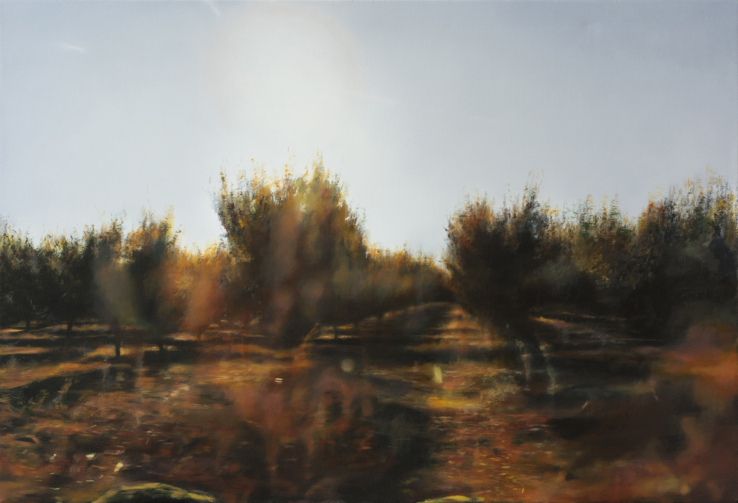 "orchard 5   •  34"" x 50""  oil on canvas  2012"