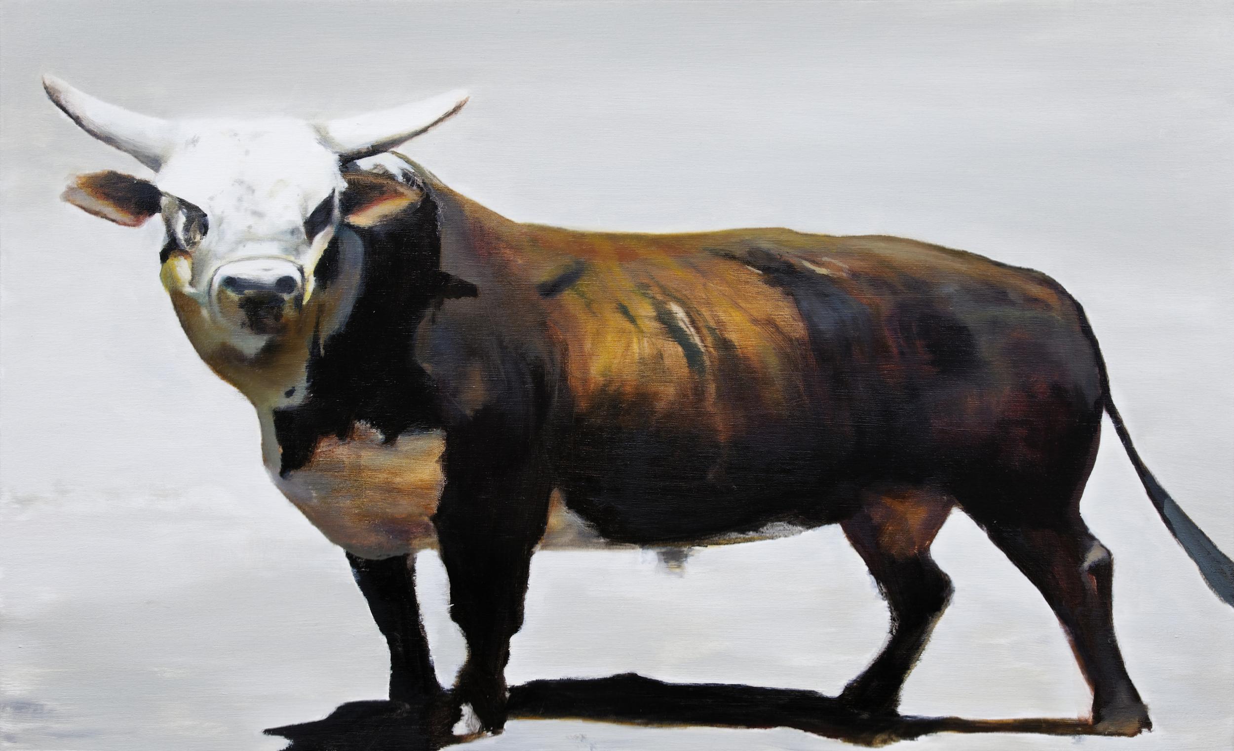 """el pirata •  22"""" x 36""""  oil on canvas  2010"""